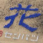 センバツ出場を祝して、人文字をつくる花咲徳栄の生徒たち=加須市で